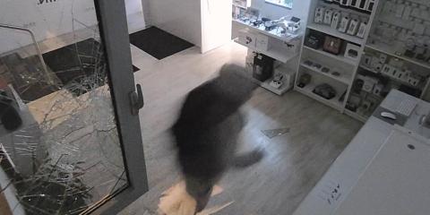 Appsolute betörés kamerafelvétel pillanatképe