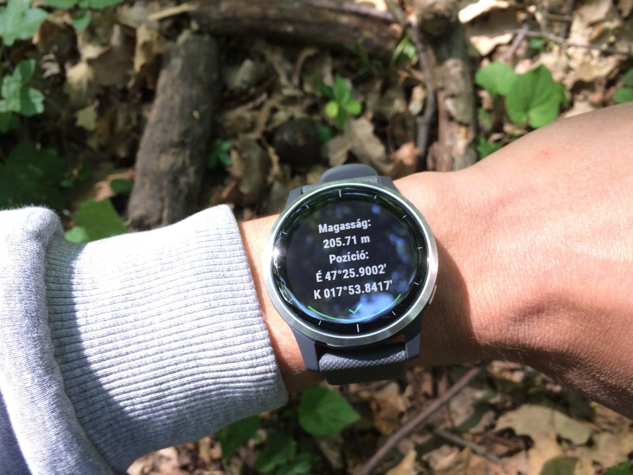 Egy bakonyi erdő rejtekének GPS koordinátái